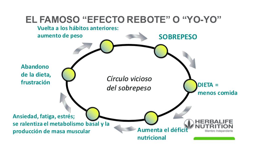 efecto rebote yo-yo dietas