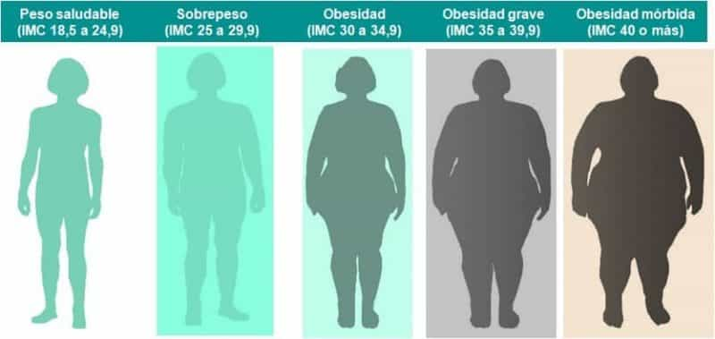 indice de masa corporal peso ideal iimc